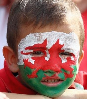 Welsh fan face painted dragon
