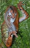 Body Paint Tiger